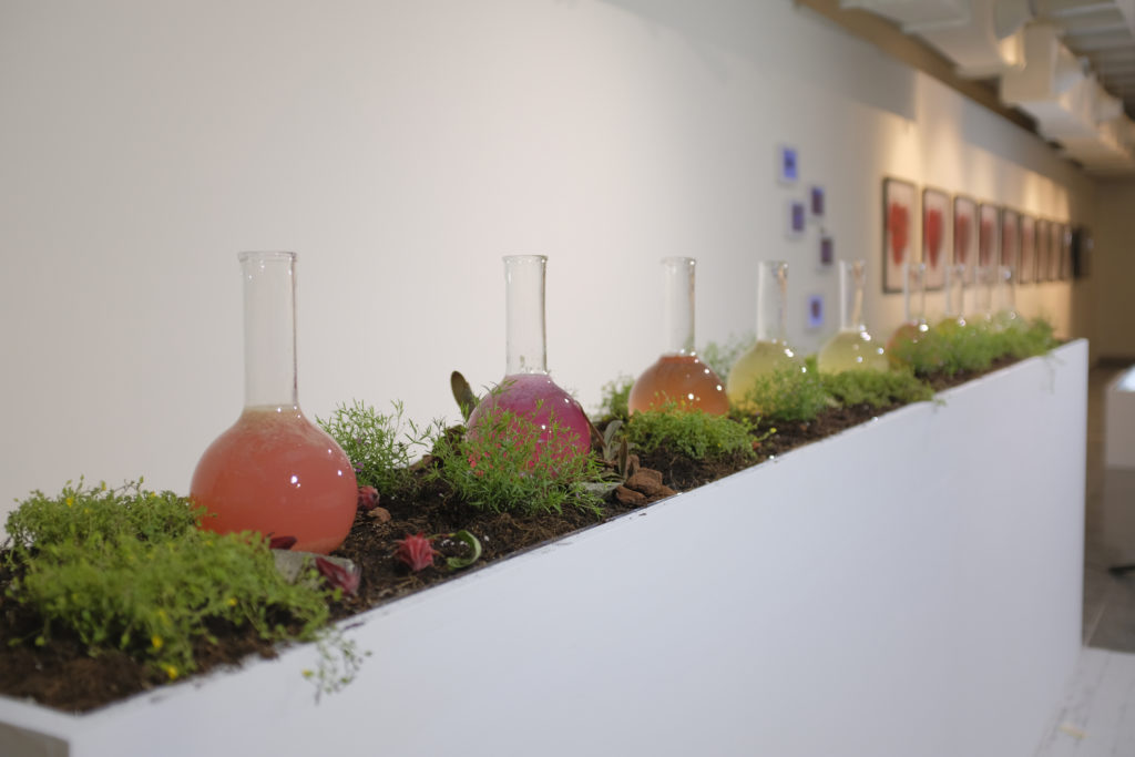 Inside the Bottles-dwelling in the Nantou, 2018  Femi-Flow: Creating Female subjectivity in Art, National Taiwan Craft Research and Development Institute, Nantou, Taiwan